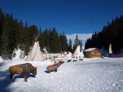Preparation saison 2010 piste des indiens bison cibles 3d